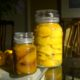 A Low Carbon Life|Post 9 2016|Preserving Gifted Lemons